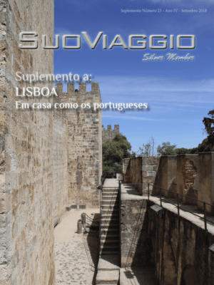 Facebook Vetrina Suplemento Silver 09
